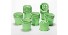 pot-duo-10-v-zeleni.jpg